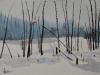 frozen-pond
